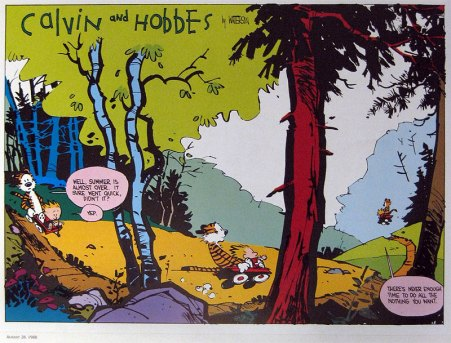 Calvin: There's never enough time to do all the nothing you want.