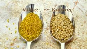 Millet or Quinoa?