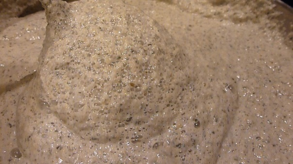 See the bubbles that have formed as the dough ferments.