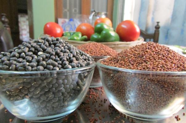 Urad and Ragi (Black Gram and Finger Millet) ready to soak for idli and dosa batter.